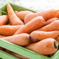 Box of Carrots
